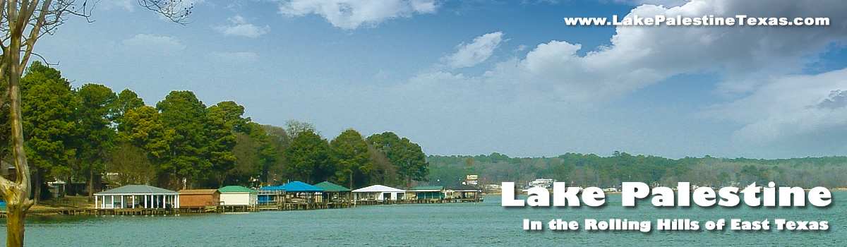 Lake Palestine Texas