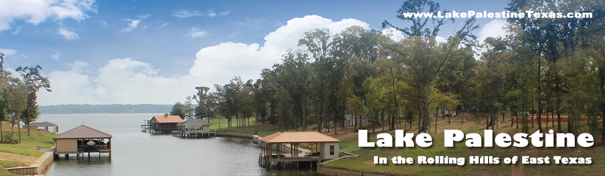 Lake Palestine Real Estate Lakeside Living Waterfront Property