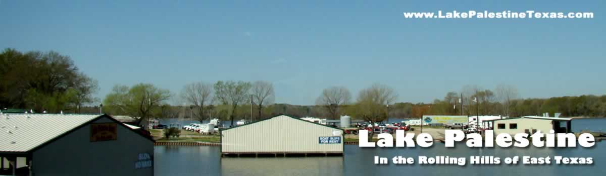 Lake Palestine Access Marinas Boat Launches Ramps Boat